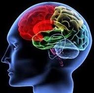 Adultos Déficit de Atención/Hiperactividad (TDAH): Diferencias entre ... | tdah | Scoop.it