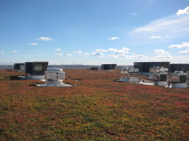 FedEx Packs Green Roof the Size of Three Football Fields into O'Hare International Airport | Vertical Farm - Food Factory | Scoop.it