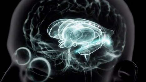 Mediathek: Wie bewusst ist uns das Unbewusste? | Psychoanalyse | Scoop.it