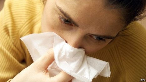 Common cold 'prefers cold noses' | Media Cultures: Microbiology in the news | Scoop.it