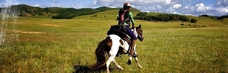 Review of the 2011 Mongol Derby- how it was won, and lost ... | Endurance and Competitive Trail Riding | Scoop.it