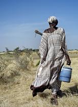 SOS Faim en guerre contre l'accaparement de terres ! | Questions de développement ... | Scoop.it