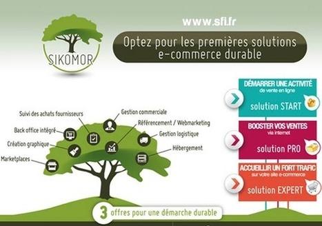 Bien choisir sa solution e-commerce: 10 conseils pour un choix durable   Ecommerce-Live.net   Visioconférence   Scoop.it
