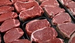 Viande rouge cancérigène : Un impact très négatif sur notre santé et nos reins | Toxique, soyons vigilant ! | Scoop.it