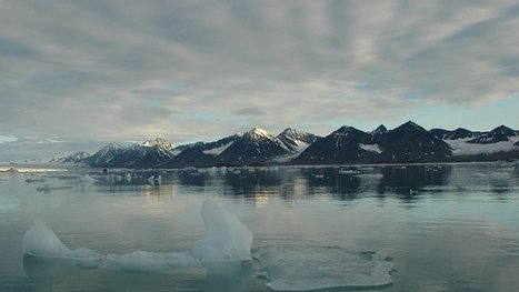 Arctic melting at 'amazing' speed | A mixed bag - wildlife, food, travel | Scoop.it