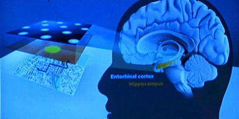 This Discovery Of The Brain's 'Inner GPS' Just Won A Nobel Prize | For Curious minds | Scoop.it