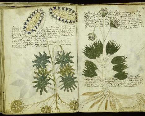 grandes misterios sin resolver  - Manuscrito Voynich | VIM | Scoop.it