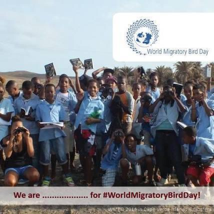 Newsroom | World Migratory Bird Day | GarryRogers Biosphere News | Scoop.it