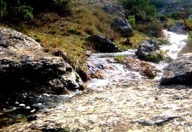 Pollution de l'eau : Causes et impacts sur notre santé | svt pollution de l'eau et risque pour la santé mars 2013 | Scoop.it