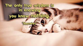 Wisdom Quotes (The only true wisdom is in knowing you know nothing) | FULL HD (High Definition) Wallpapers, Pictures For Desktop Backgrounds & Facebook Timeline Cover | Quotes photos For Facebook | Scoop.it