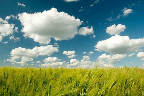 Cloud computing: leyendas entorno a una tecnologí | Tecnología y Negocios | Scoop.it