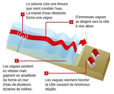 Comment le séisme et le tsunami se sont formés au Japon | L'Express.fr | Japon : séisme, tsunami & conséquences | Scoop.it