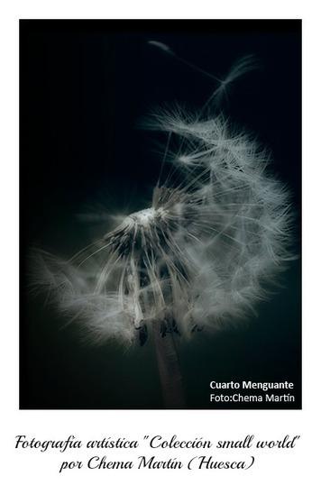Fotografía artística | El mundo de Mamita.com | Fotografía | Scoop.it