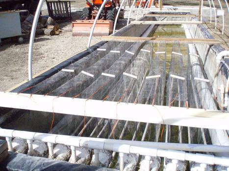Experimental Raceway Construction | efficient gardening | Scoop.it