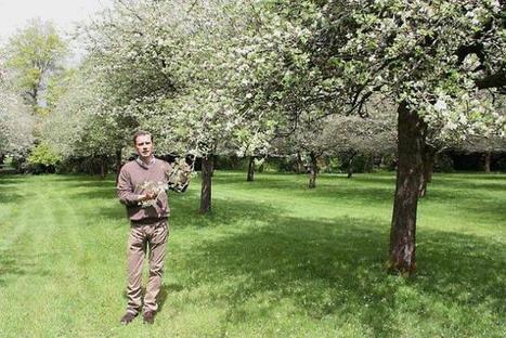 Cidrerie. Manoir du Kinkiz (29), une 3e appellation en vue   Ouest France Entreprises   AOP   Scoop.it