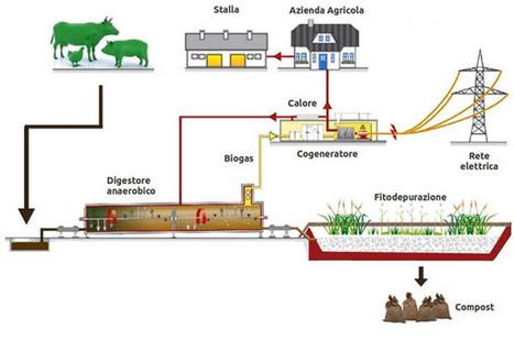 Energia da rifiuti 2.0: il Biogas - Stile Naturale | Energie alternative attraverso la rivoluzione sostenibile | Scoop.it