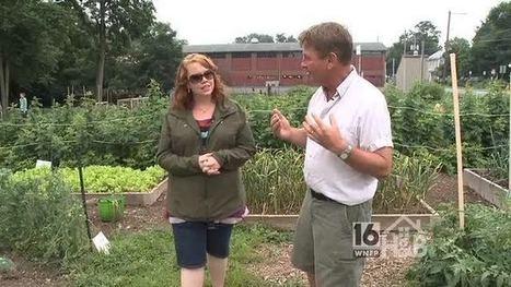 Lewisburg Community Garden | WNEP.com | Seedfolks | Scoop.it