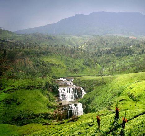 Le Sri Lanka tel que Shanti Travel l'aime | Actu & Voyage au Sri Lanka | Scoop.it