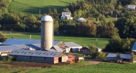 ¿Qué puede hacer un ingeniero industrial en la agricultura?   Revista del Sector Industrial en Costa Rica   Comercio de Hortalizas   Scoop.it