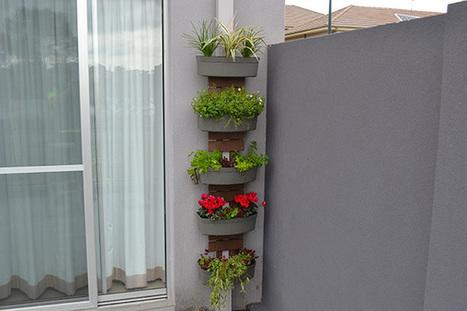 Downpipe Gardens | Balcony Gardening | Scoop.it