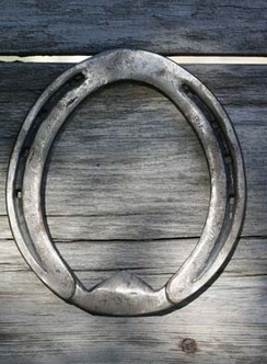 Specialized Horseshoes | Farm Animals | Scoop.it
