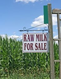 Iowa on Verge of Legalizing Raw Milk; Resistance to Food Tyranny is Rising, where freedom has been systematically crushed by oppressive government | News You Can Use - NO PINKSLIME | Scoop.it