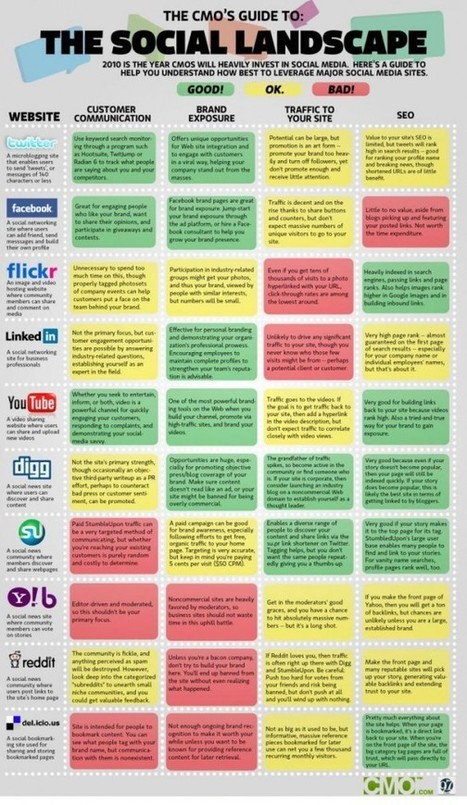 The 10 Best Infographics for Internet Marketing Pros | E-Marketing BS315 | Scoop.it