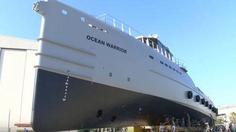 New Vessel to Enter Antarctic Whaling Battle | Oceans and Wildlife | Scoop.it