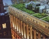 Green Roofs: International Inspirations | Sustainable Cities Collective | Sustainable Thinking | Scoop.it
