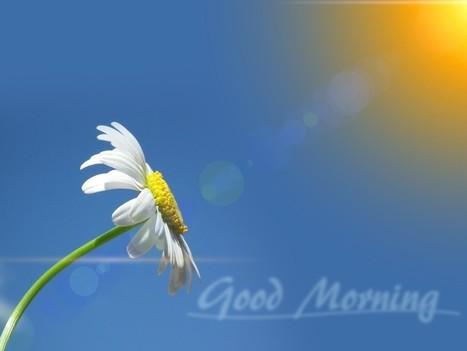 Cinco cosas que es bueno hacer por las mañanas | Tecnología | Scoop.it