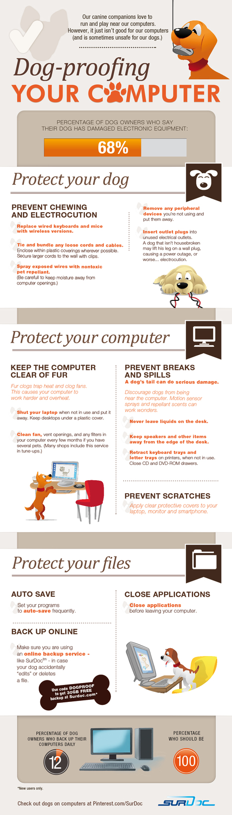 Dog-Proofing Your Computer [INFOGRAPHIC] | All things Social & Tech | Scoop.it