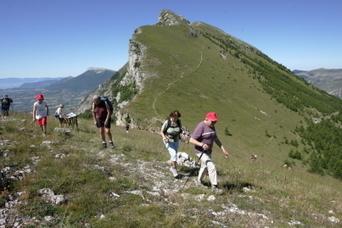Sports de montagne : lesquels ont la cote ? | T... | Sports de montagne | Scoop.it