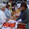 La vente directe de fruits et légumes a la cote | Locavore | Manger Juste & Local | Scoop.it