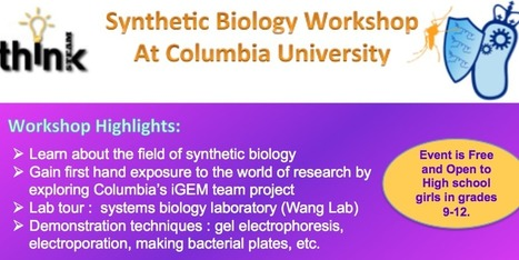 Synthetic Biology Workshop with Columbia University's iGEM Team | SynBioFromLeukipposInstitute | Scoop.it