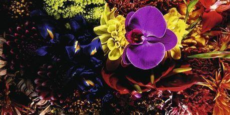 La fleur de l'art - Le Monde | art move | Scoop.it