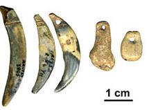 Les datations radiocarbone pour rendre à Néandertal ce qui est à Néandertal… | Aux origines | Scoop.it