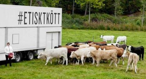 Les abattoirs mobiles arrivent en France | Options Futurs Rio+20 | Scoop.it