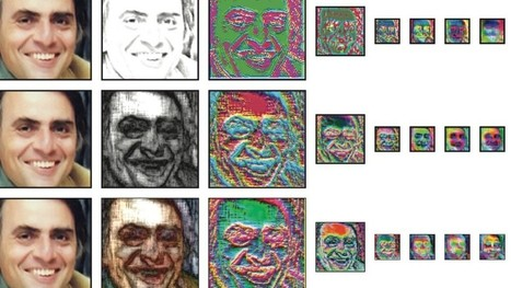 Machine-Vision Algorithm Learns to Transform Hand-Drawn Sketches Into Photorealistic Images | Data and Algorithms. Everyday life and culture | Scoop.it