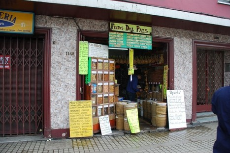 Where to buy X in Santiago? A tale of brown sugar, hazelnuts, pecans, and more. | Bearshapedsphere | cachando Chile | Scoop.it