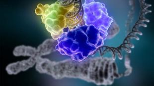 One Million Genomic Datasets | The Scientist | Complex Insight  - Understanding our world | Scoop.it
