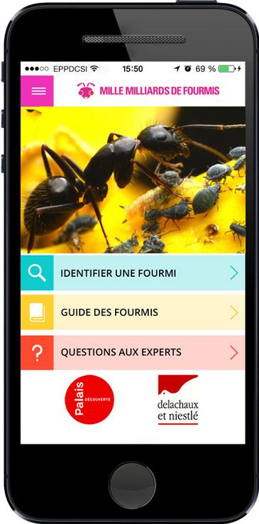 Application Mille Milliards de fourmis - A la une - Palais de la découverte - Musée parisien des sciences depuis 1937 | Culture numérique, bibliothèques et réseaux sociaux | Scoop.it