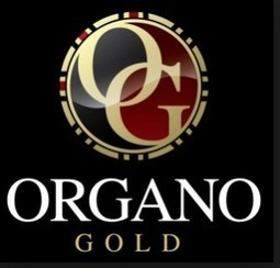 Organo Gold Coffee Australia - Developing Organo Gold as a Business | Dinner Recipes | Scoop.it
