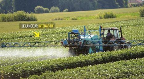 Exclusif : le palmarès des pesticides interdits… les plus vendus en France | Toxique, soyons vigilant ! | Scoop.it