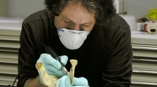 Neanderthals: Bone technique redrafts prehistory | 21st Century Innovative Technologies and Developments as also discoveries, curiosity ( insolite)... | Scoop.it