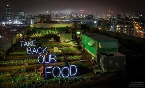 Rooftop Farming | De mogelijkheden van onze daken | Scoop.it
