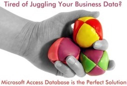 Tired of Juggling Your Business Data? Microsoft Access Database is a Perfect Solution. | Technology Databases | Scoop.it
