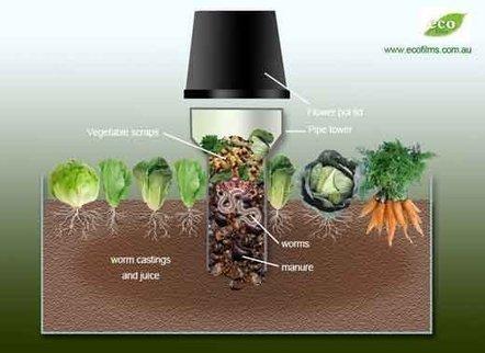 Build a Worm Tower To Spread Compost Over Your Garden   Lombrihumus de Pirineo   Scoop.it