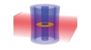 Atomic circuits move a step closer – Memory effect seen for the first time in a cloud of ultracold atoms | Amazing Science | Scoop.it