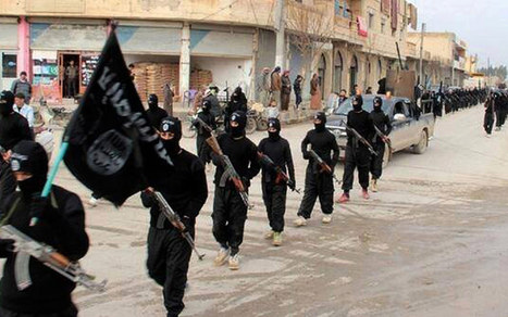 American fighting with Islamic State killed in Syria | Al Jazeera America | Upsetment | Scoop.it