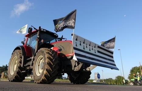 Bretagne : Les agriculteurs s'en prennent aux plateformes logistiques - 20 Minutes | Le Fil @gricole | Scoop.it